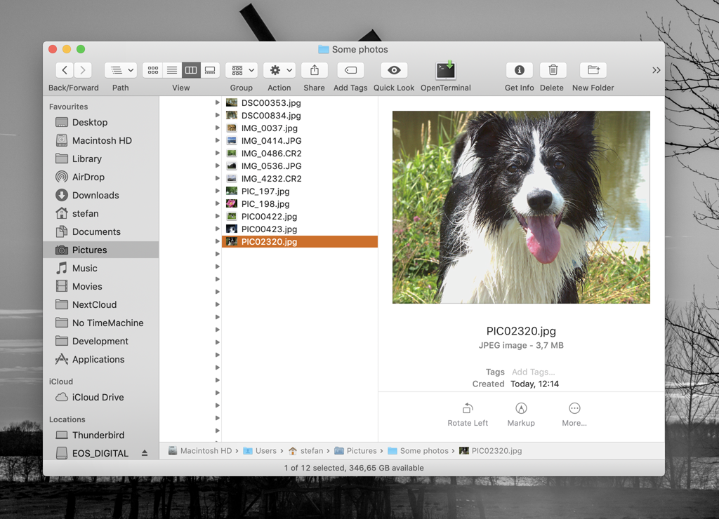 Finder Screenshot Before Renaming